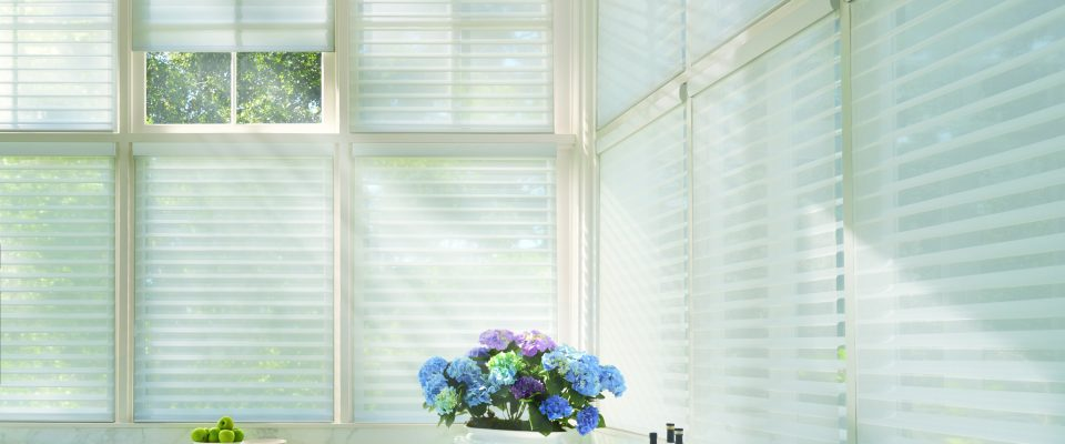 Shutters, Shades or Blinds?